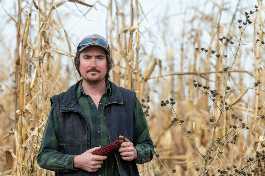 Monsanto and BASF poison organic farmers' fields