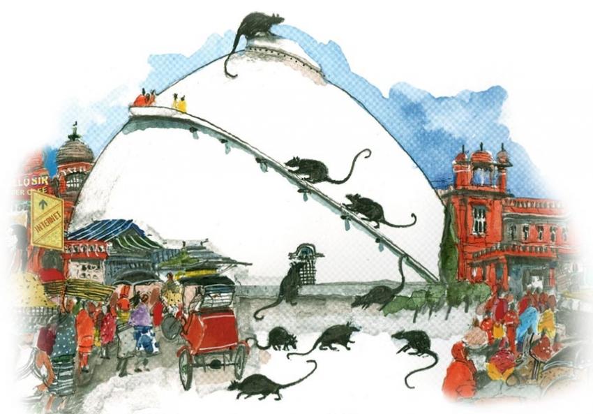 Patna Culture of Patna
