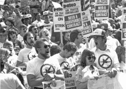 the main significance of the patco strike in 1981 was that