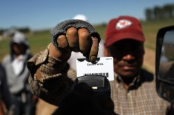 A migrant farm worker from Mexico holds his time card to be scanned while working at Grant Family Farms on September 3, 2010, in Wellington, Colo.   (Photo John Moore/Getty Images)